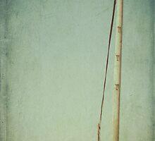 Dungeness Telegraphs by Nikki Smith