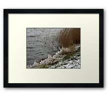 Warming Up. Framed Print