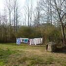 The Solar Powered Clothes Dryer by Vivian Eagleson