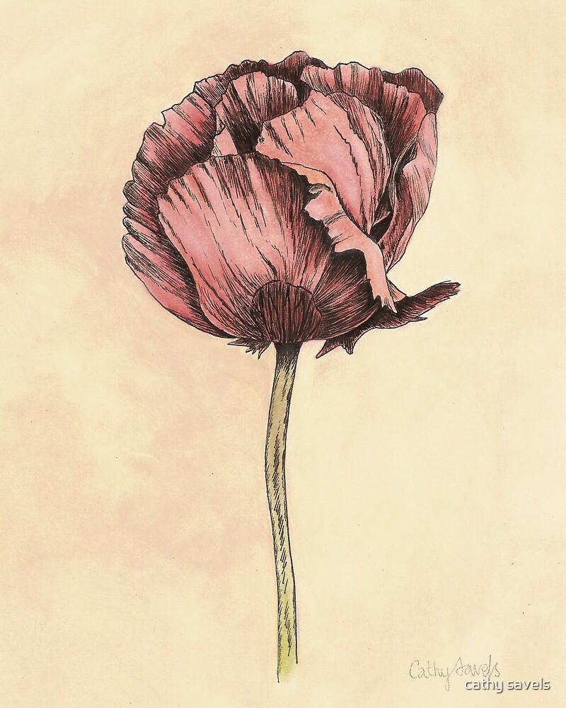 Poppy Botanical Print by cathy savels