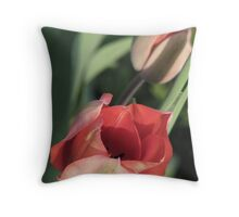 On A Gentle Breeze Throw Pillow