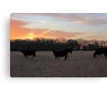 Early Morning Grazers Canvas Print