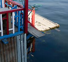 Front part of a houseboat and the weeds and water of the Dal Lake in Srinagar by ashishagarwal74