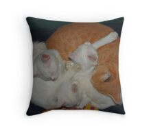 Basket of Cats Throw Pillow