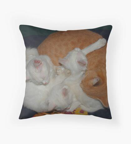 Basket of Cats Throw Pillow