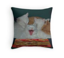 Kittens in Basket with Uncle Vlad Throw Pillow
