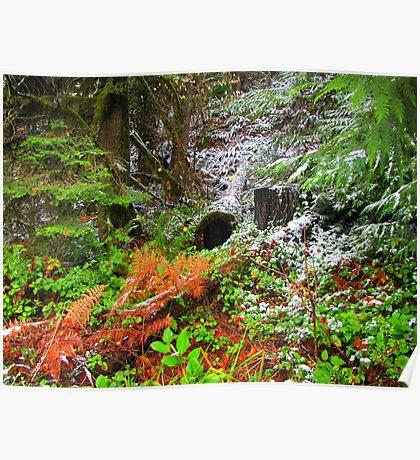 Still Winter In The Shire....Sister's Oregon Poster