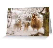 Ewe & Lambs in Snow Greeting Card