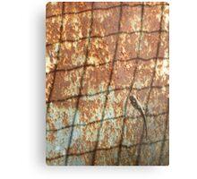 Lizard on Rusted Metal 1 Metal Print