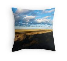 Light and Dark Countryside View Throw Pillow