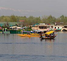 Shikaras and houseboats along with a garden in the Dal Lake in Srinagar by ashishagarwal74