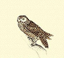The Jaguar Owl by BelleFlores