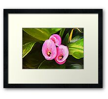 Opposites in oil Framed Print