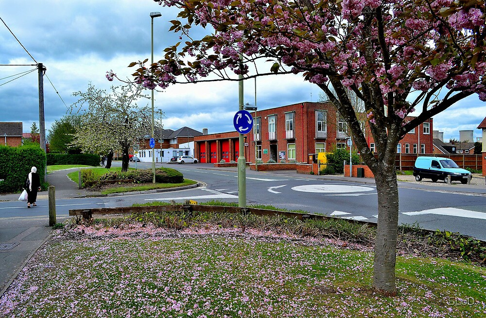 Broadway Didcot 2 by SLoD