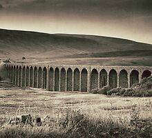 Batty Moss Viaduct, Ribblesdale. by Mark Cass