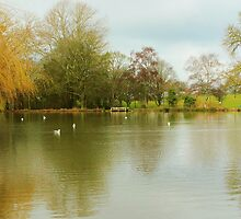 Pittville Lake by Theresa Selley