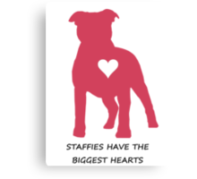 Staffies have the biggest hearts Canvas Print