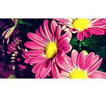Flowers To Show They Care Photographic Print