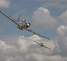 P51 Mustang Pair by warbirds