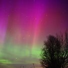 Powerful Northern Lights by Marko Palm