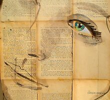 wonder by Loui  Jover