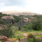 Enchanted Rock by Vivian Sturdivant