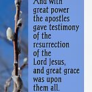 Testimony of Resurrection ~ Acts 4:33 by Robin Clifton