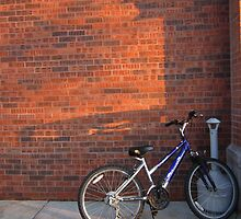 Do Not Worry How The Bicycle Looks by Guy Ricketts
