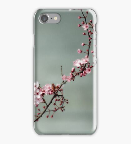Cherry Blossoms on Grey iPhone Case/Skin