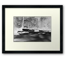 River of Fur Framed Print