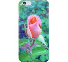 Romantic Rose iPhone Case/Skin