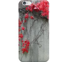 Red and Stone iPhone Case/Skin