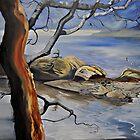 Where the Rocks meet the sea (Saanich) by Cassandra Dolen