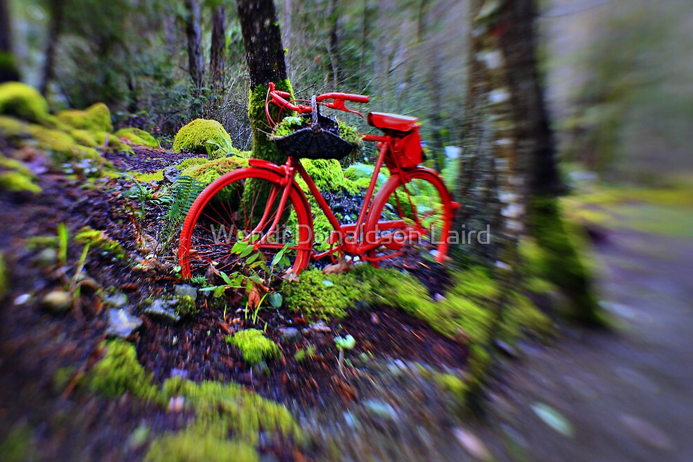If You Go Down in the Woods Today....You're Sure of a Big Surprise!! by Wendi Donaldson Laird