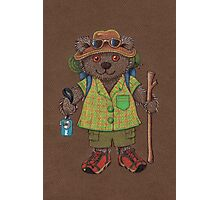 Lamington Bear Photographic Print
