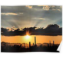 Arizona Saguaro Sunset Poster