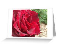 Rosa Rosenthal Greeting Card