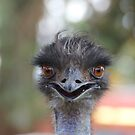 The Happy Emu by myebra