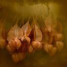Golden Grunge by Dianne English