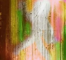 color wood by mgirax