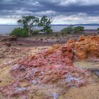 Pink Rocks. by Bette Devine