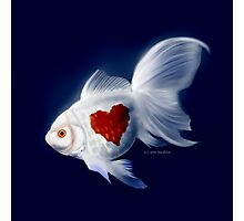 Fishy Knows It Best Photographic Print