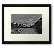 Black and White Beauty Framed Print