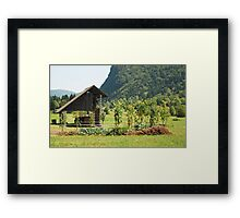 Wood Storage Building & Veg Garden Framed Print