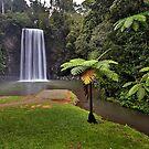Milaa Milaa Falls... by Peter Doré