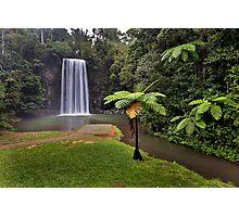 Milaa Milaa Falls... Photographic Print