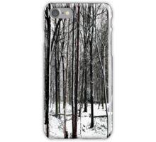 Snow Covered Woodland Essex iPhone Case/Skin