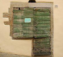 Old Wooden Door in Tuscany by jojobob