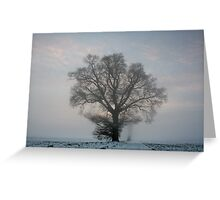 Tree & Freezing Fog,Bury St Edmunds,Suffolk Greeting Card