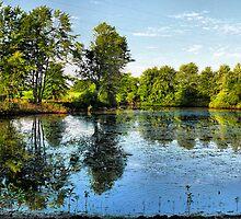 Kentucky Country by Carla Jensen